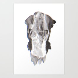 Tritone F Art Print