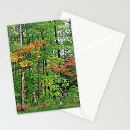 Mindless Fanatic Stationery Cards