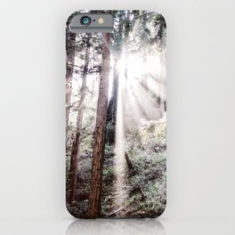 Big Sur Forest Sunbeams iPhone Case
