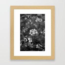 Petites Fleurs Framed Art Print