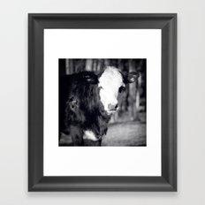 Little Cow Framed Art Print