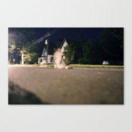 Ghost Kitty Canvas Print