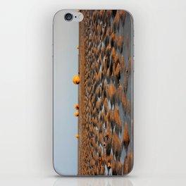 Sand Patterns iPhone Skin