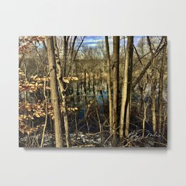 Black Creek Flooded Metal Print