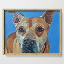 Happy the Bully Dog Portrait Serving Tray