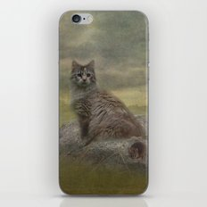 The Mouser iPhone & iPod Skin