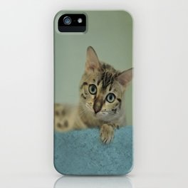 Cute Things Come in Kitty Packages iPhone Case