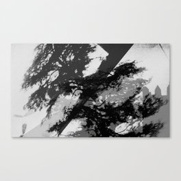 Experimental Photography#14 Canvas Print