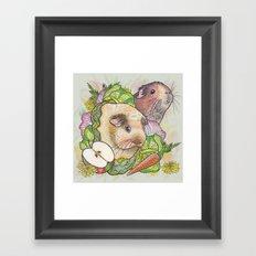 Guinea Pigs Framed Art Print