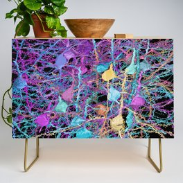 Cortical Brain Neurons by Kfay Credenza