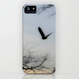 My Friend, The Eagle iPhone Case