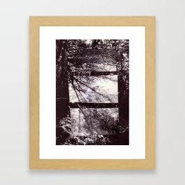 Forest Shadows Framed Art Print