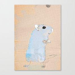 gerb Canvas Print