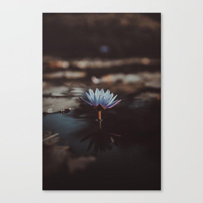 pastel blue Canvas Print