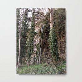 Ewok in cahors Metal Print