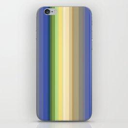 Multi-colored striped pattern . iPhone Skin