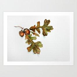 October - oak leaves watercolor  Art Print