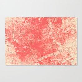 1432 Canvas Print