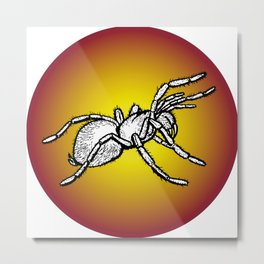 giant spider in round frame Metal Print