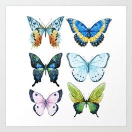 Butterflies 02 Art Print