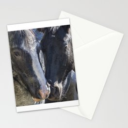 Bachelor Stallions - Pryor Mustangs Stationery Cards