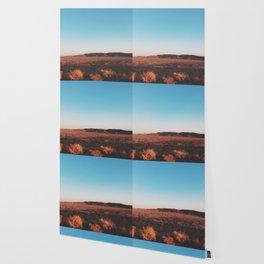 Desert Tranquility Wallpaper