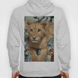 Lambert the Lion and His Blanket Hoody