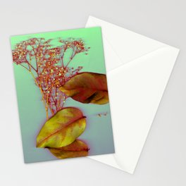 Sweet Greens | Photo Image, Fall, Autumn Leaves, Dried Baby's Breath Flowers, Real Flowers, Pastel Stationery Cards