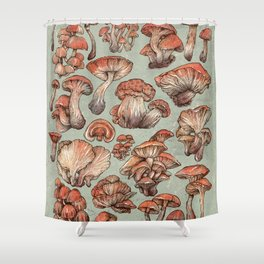 A Series of Mushrooms Shower Curtain