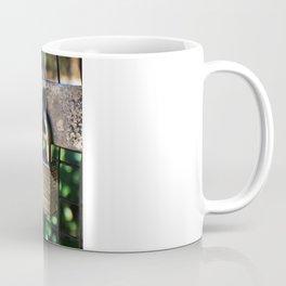 ~Lock Your Love Up and Throw Away the Key~ Coffee Mug