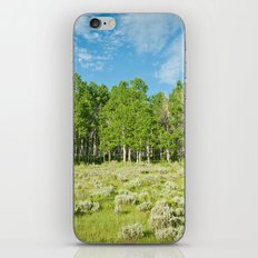 Summer skies iPhone & iPod Skin