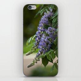 Purple Wisteria iPhone Skin