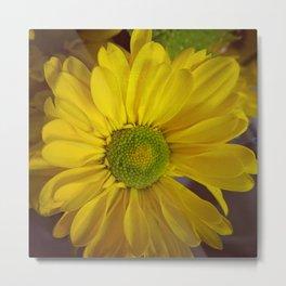 Sunny Yellow Flower Metal Print