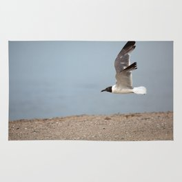 Laughing Gull in Flight Rug