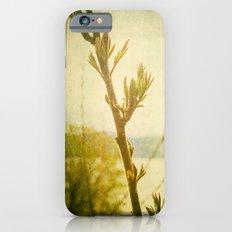 Primavera iPhone 6 Slim Case