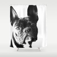 french bulldog Shower Curtains featuring French Bulldog by Falko Follert Art-FF77