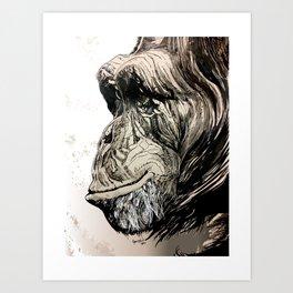 The Wise Chimpa Art Print