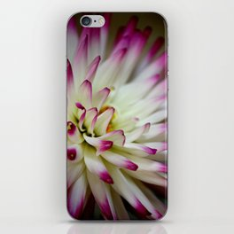 Hayley Jane Dahlia iPhone Skin