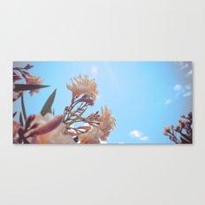 Summer Time Canvas Print