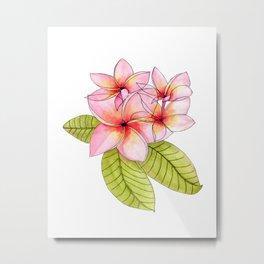 Pretty Pink Plumerias Metal Print