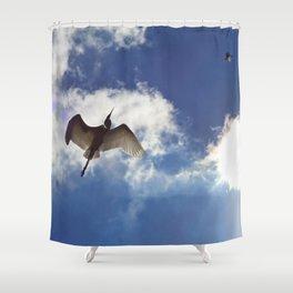 Egrets soaring against blue sky Shower Curtain