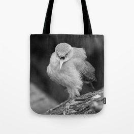 Bird - Furnarius Angry Tote Bag