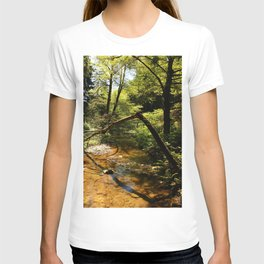 Muir Woods Impression T-shirt