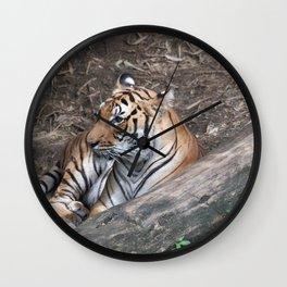 Tiger at Rest Wall Clock