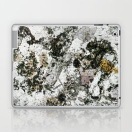 Hornfels 02 - Frozen Still Life Laptop & iPad Skin