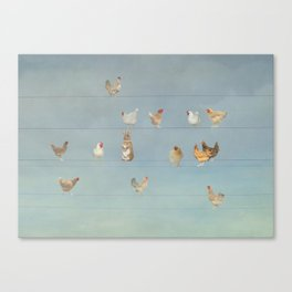 Thirteen chickens and a rabbit Canvas Print