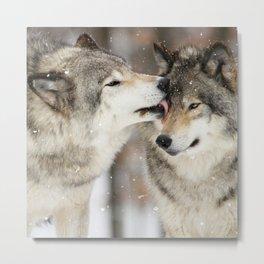 Wolf Kisses Metal Print