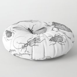 Vintage Beetle black and white drawing Floor Pillow