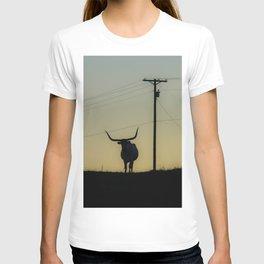 Longhorn at Sunset T-shirt