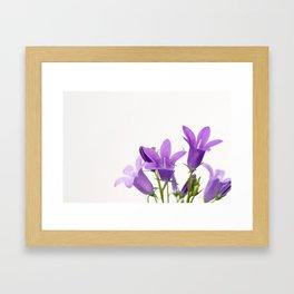 PURPLE FLOWERS - Bellflowers #2 #decor #art #society6 Framed Art Print